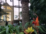 Tamara-Conservatory2